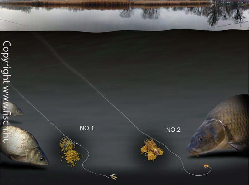 Finoman távol-horgász praktika | Horgász Online Webáruház