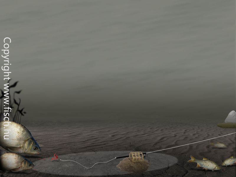 Super sensitive feeder horgász bot
