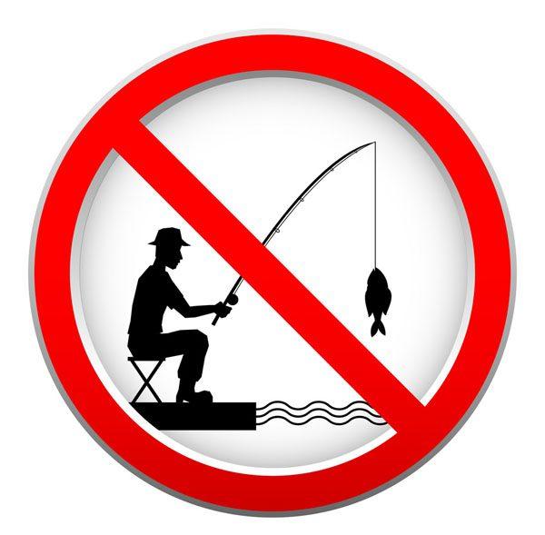 Horgász tilalmi idők, méretkorlátozás