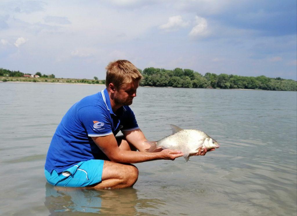 Horgász webáruház, bolognai horgászbot, horgász, horgászat, dunai horgász módszer, Dunai horgászat,